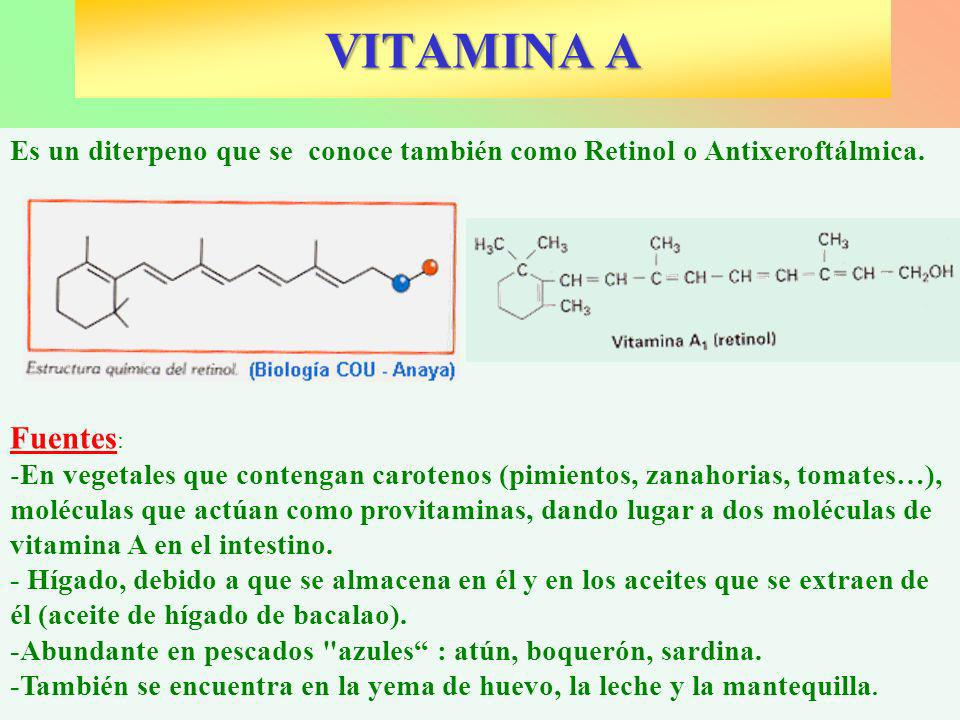 VITAMINA AEs un diterpeno que se conoce también como Retinol o Antixeroftálmica. Fuentes: