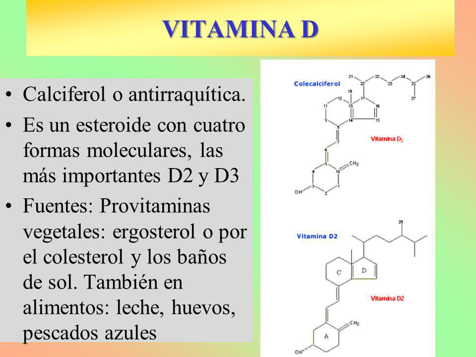 VITAMINA D Calciferol o antirraquítica.