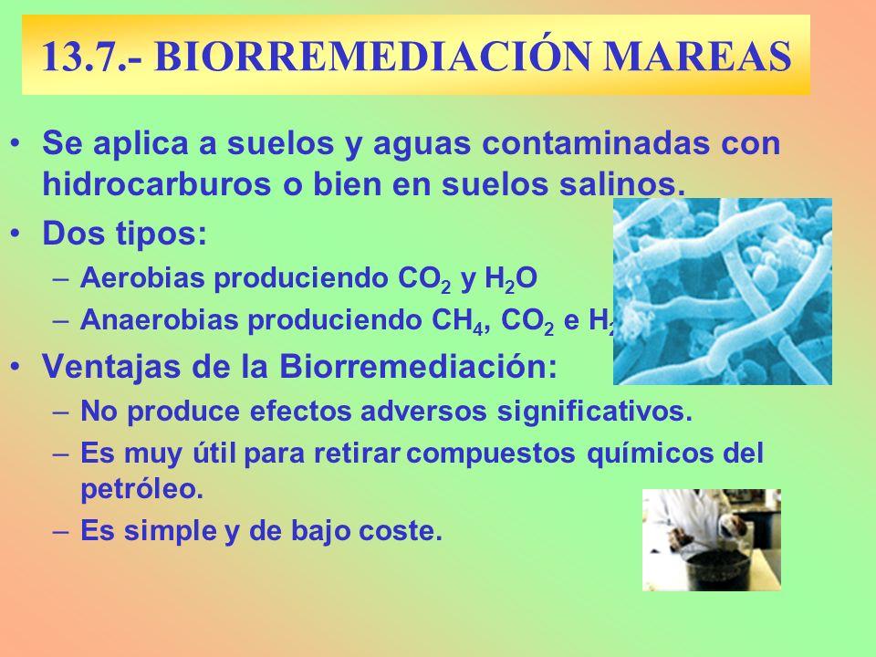 13.7.- BIORREMEDIACIÓN MAREAS