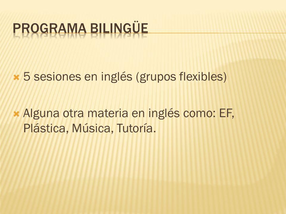 PROGRAMA BILINGÜE 5 sesiones en inglés (grupos flexibles)