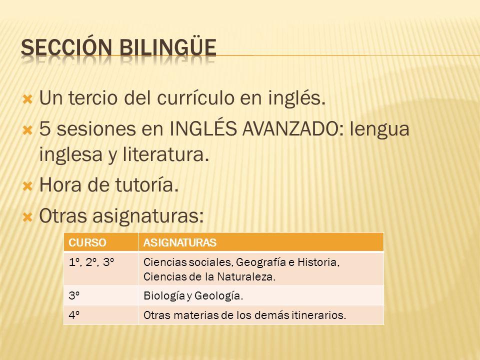 Sección bilingüe Un tercio del currículo en inglés.