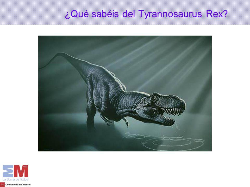 ¿Qué sabéis del Tyrannosaurus Rex