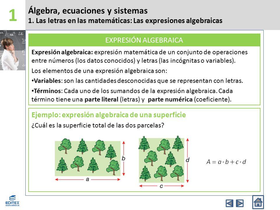 1 Álgebra, ecuaciones y sistemas 1. Las letras en las matemáticas: Las expresiones algebraicas.