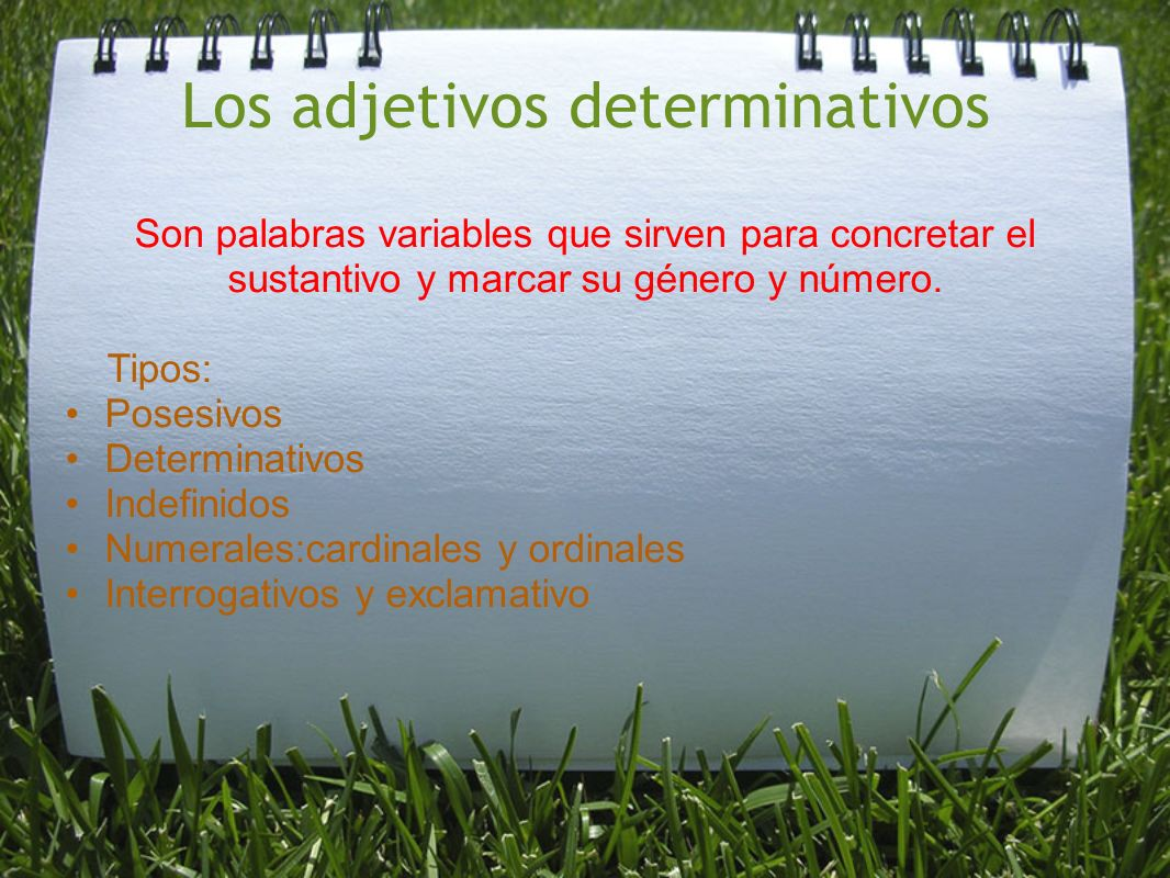 Los adjetivos determinativos