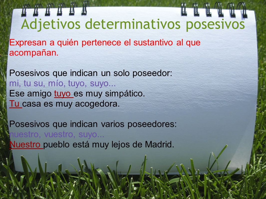 Adjetivos determinativos posesivos