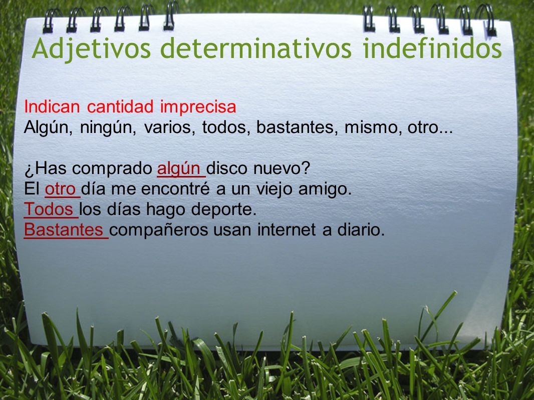Adjetivos determinativos indefinidos