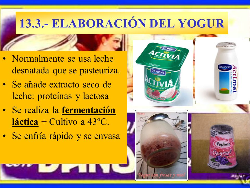 13.3.- ELABORACIÓN DEL YOGUR