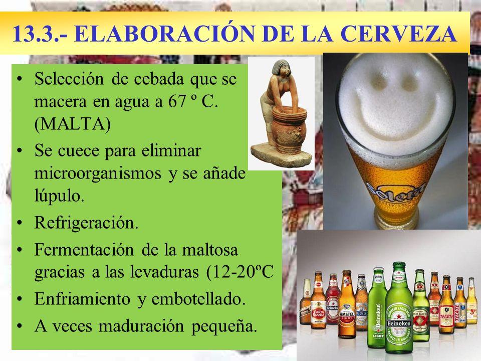 13.3.- ELABORACIÓN DE LA CERVEZA