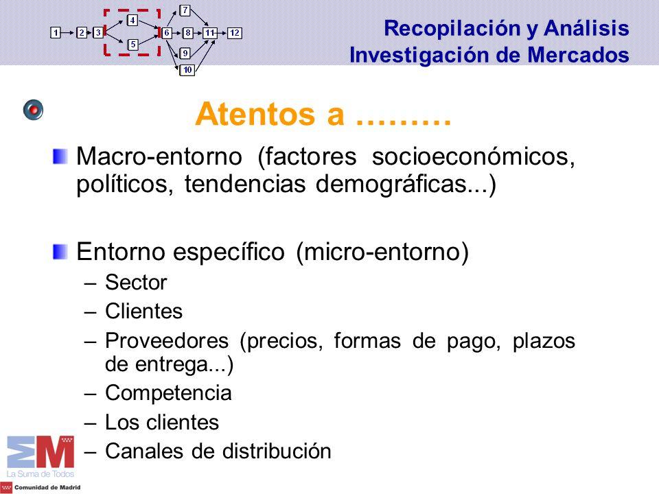 Recopilación y Análisis Investigación de Mercados