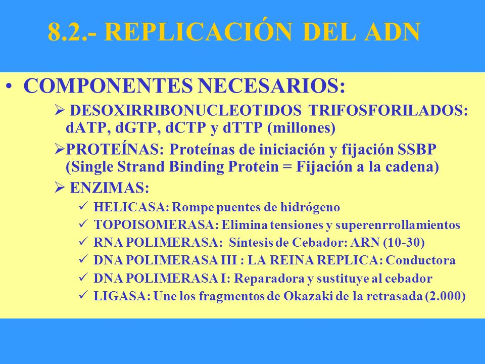 8.2.- REPLICACIÓN DEL ADN COMPONENTES NECESARIOS: