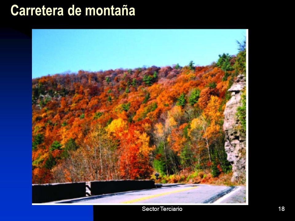 Carretera de montaña Sector Terciario