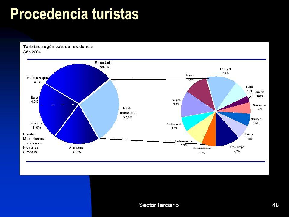 Procedencia turistas Sector Terciario