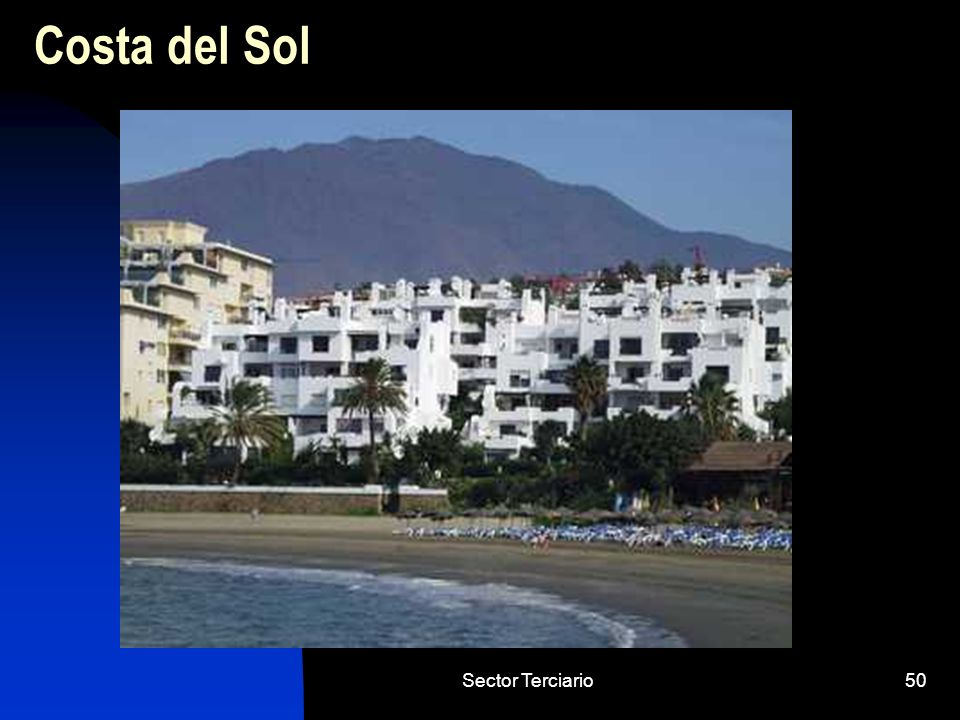Costa del Sol Sector Terciario