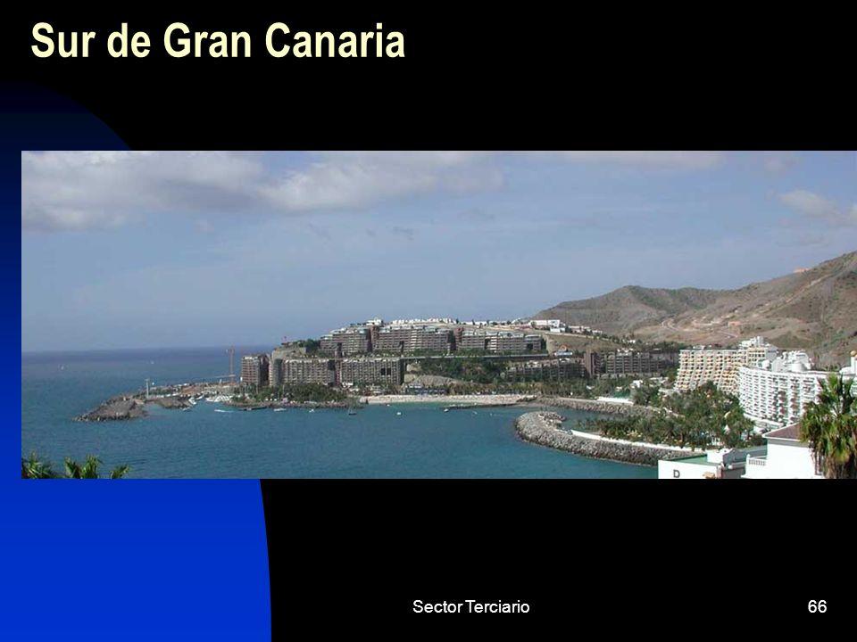 Sur de Gran Canaria Sector Terciario