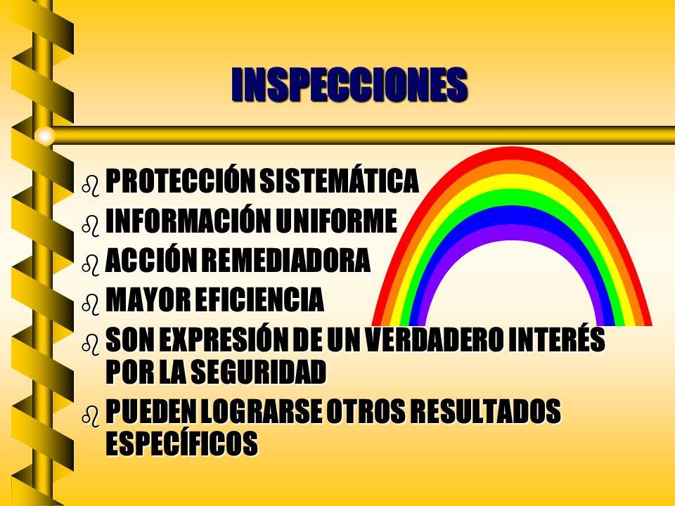 INSPECCIONES PROTECCIÓN SISTEMÁTICA INFORMACIÓN UNIFORME