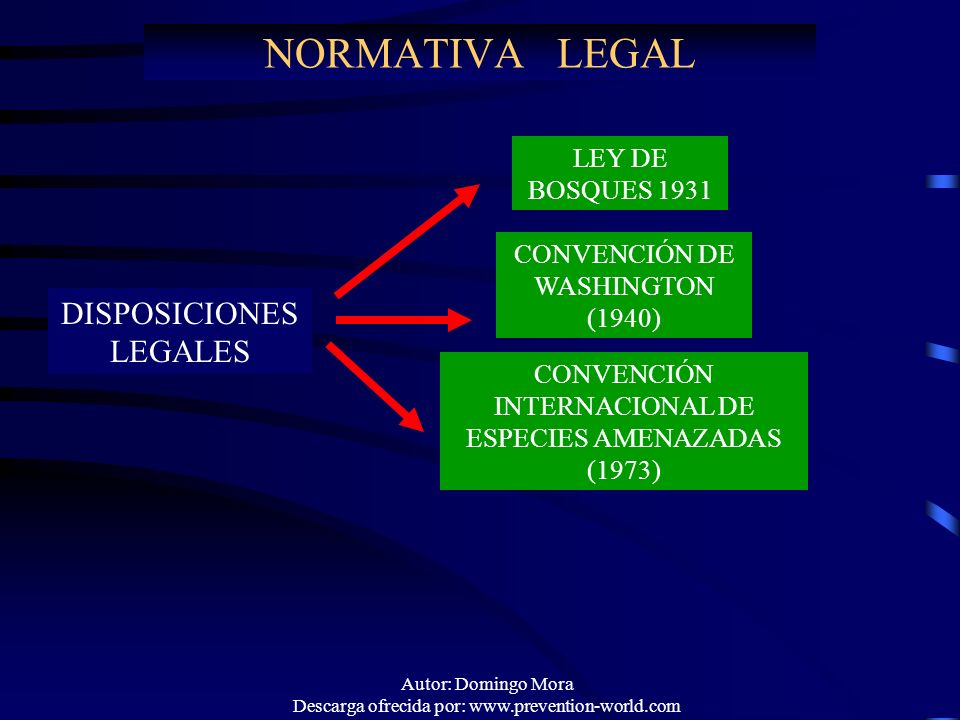 NORMATIVA LEGAL DISPOSICIONES LEGALES LEY DE BOSQUES 1931