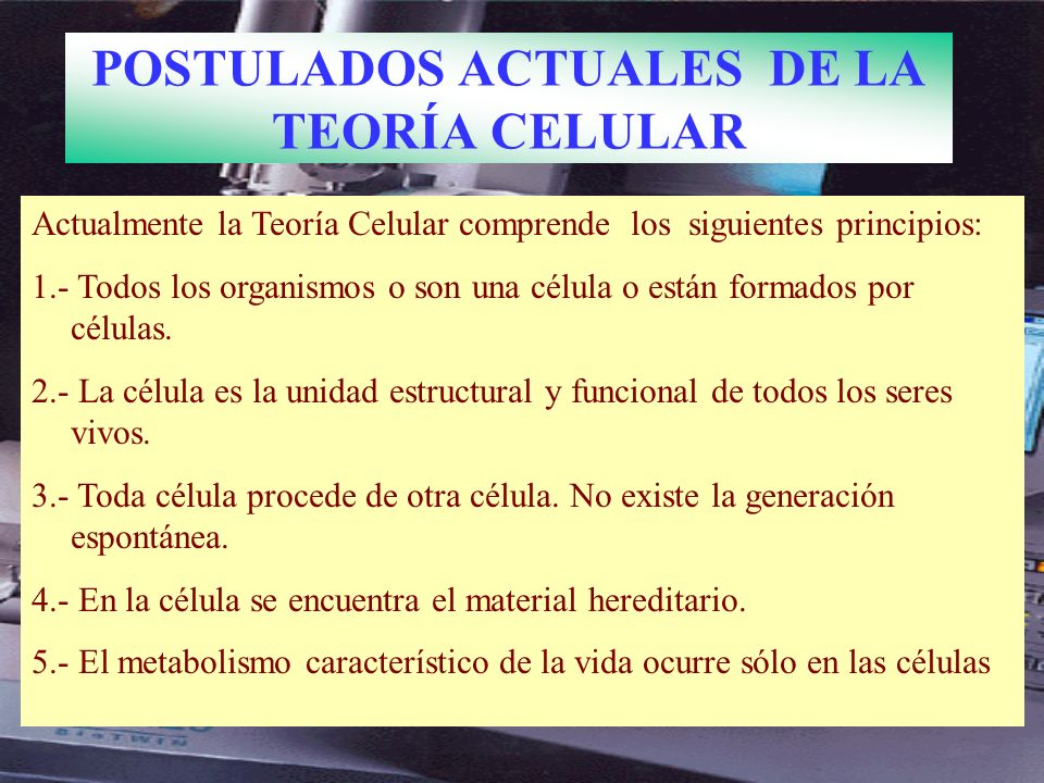 POSTULADOS ACTUALES DE LA TEORÍA CELULAR