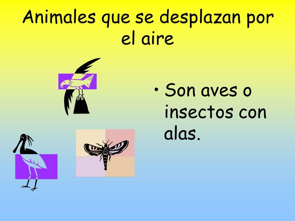 Animales que se desplazan por el aire