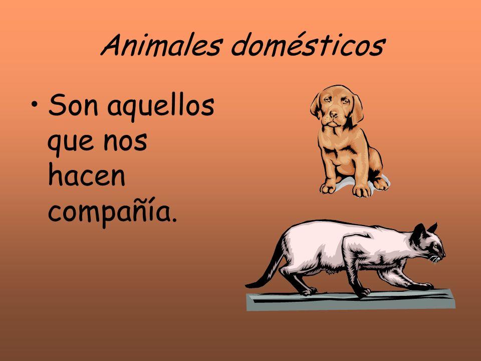 Animales domésticos Son aquellos que nos hacen compañía.