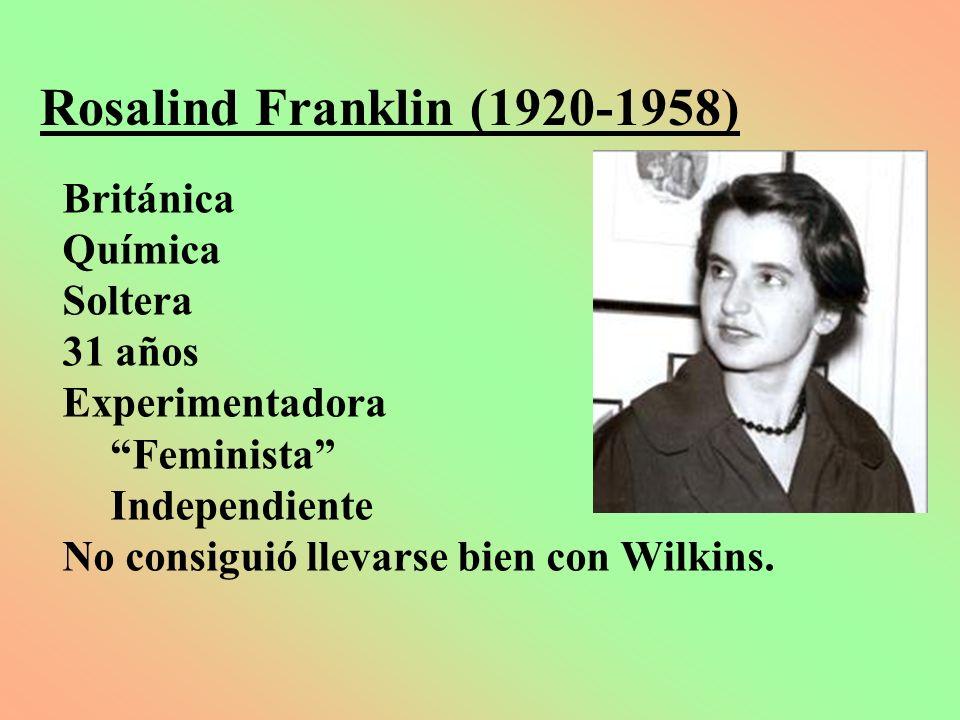 Rosalind Franklin (1920-1958) Británica Química Soltera 31 años