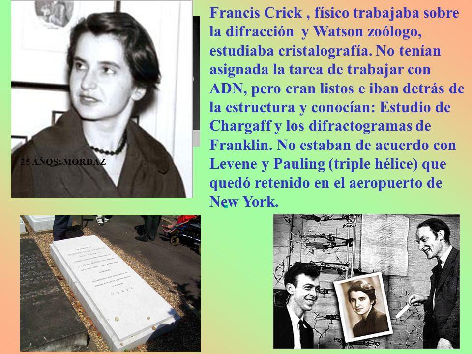 Francis Crick , físico trabajaba sobre la difracción y Watson zoólogo, estudiaba cristalografía. No tenían asignada la tarea de trabajar con ADN, pero eran listos e iban detrás de la estructura y conocían: Estudio de Chargaff y los difractogramas de Franklin. No estaban de acuerdo con Levene y Pauling (triple hélice) que quedó retenido en el aeropuerto de New York.