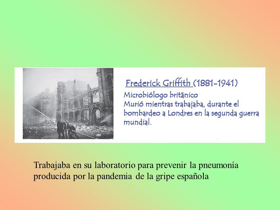 Trabajaba en su laboratorio para prevenir la pneumonía producida por la pandemia de la gripe española