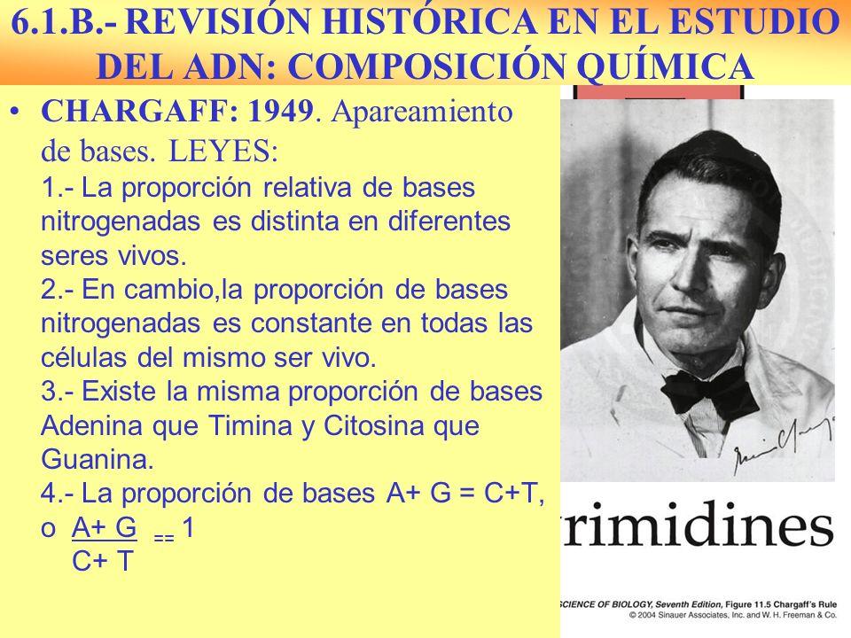 6.1.B.- REVISIÓN HISTÓRICA EN EL ESTUDIO DEL ADN: COMPOSICIÓN QUÍMICA