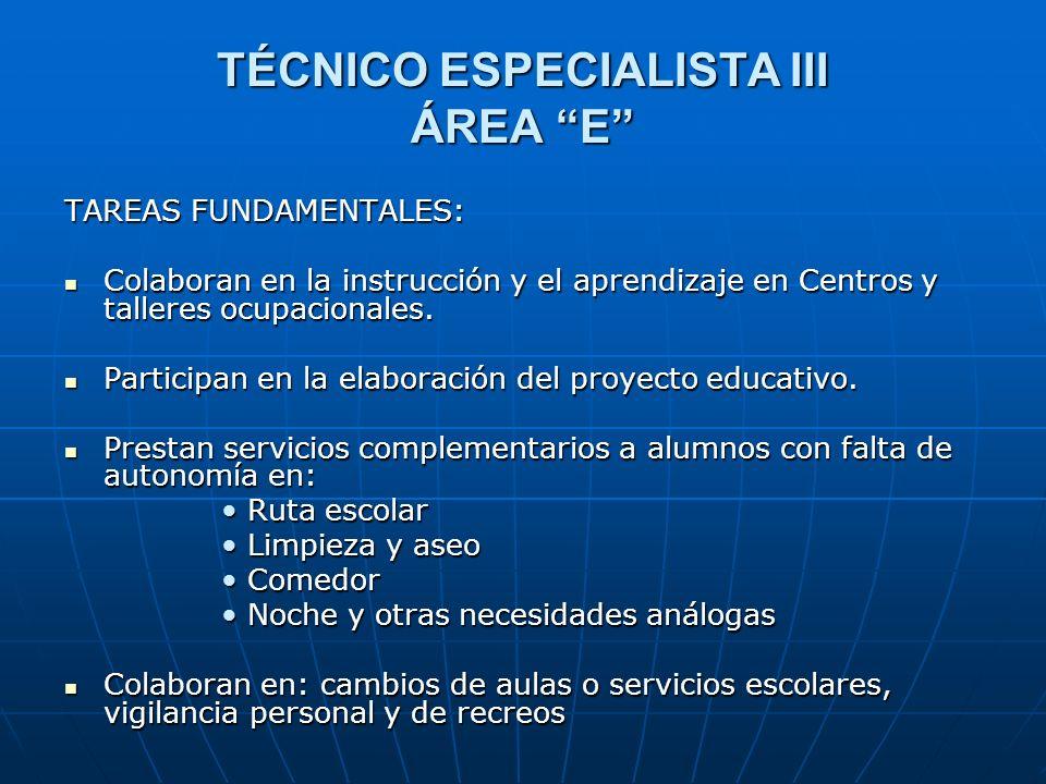 TÉCNICO ESPECIALISTA III ÁREA E