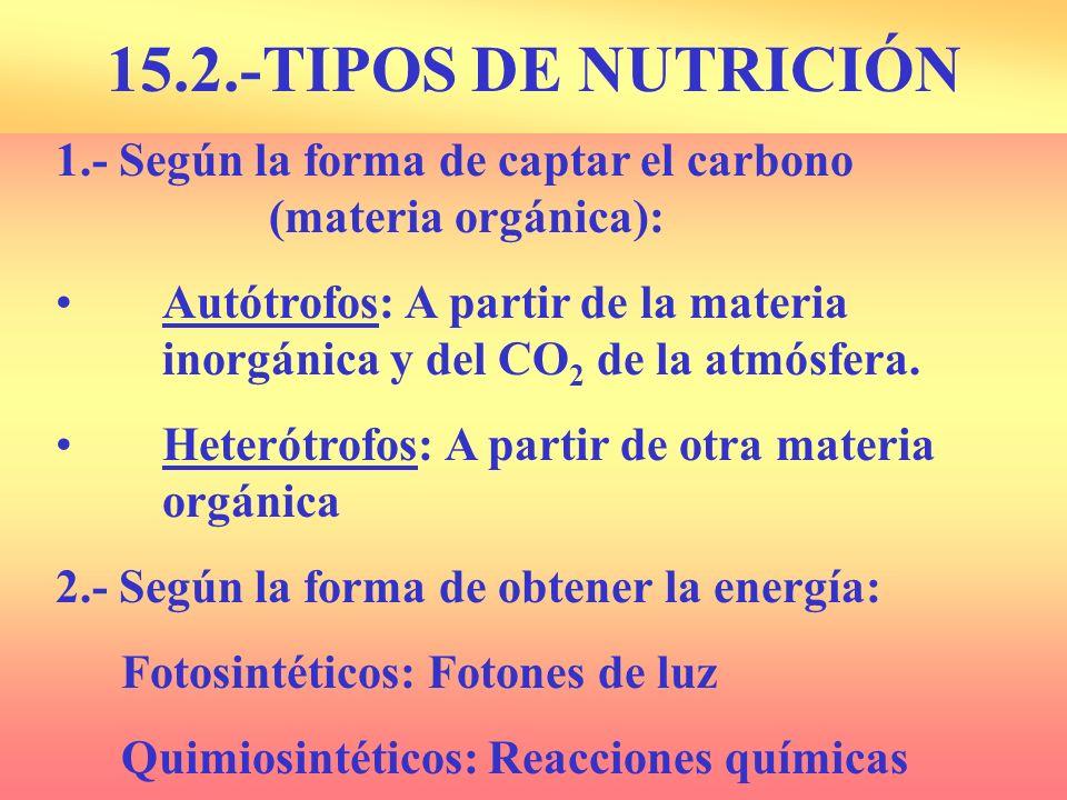 15.2.-TIPOS DE NUTRICIÓN1.- Según la forma de captar el carbono (materia orgánica):