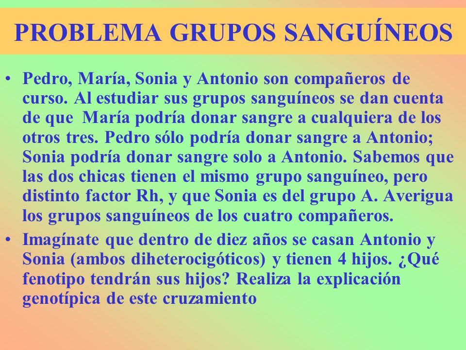 PROBLEMA GRUPOS SANGUÍNEOS