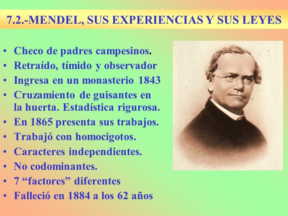 7.2.-MENDEL, SUS EXPERIENCIAS Y SUS LEYES