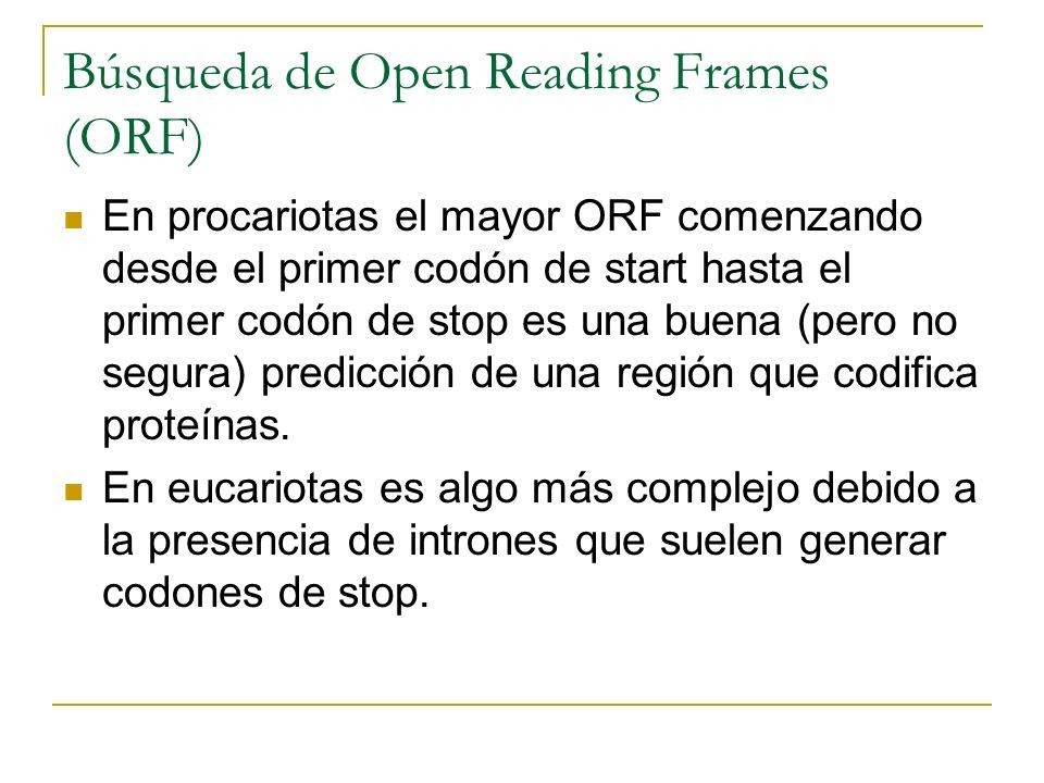 Búsqueda de Open Reading Frames (ORF)