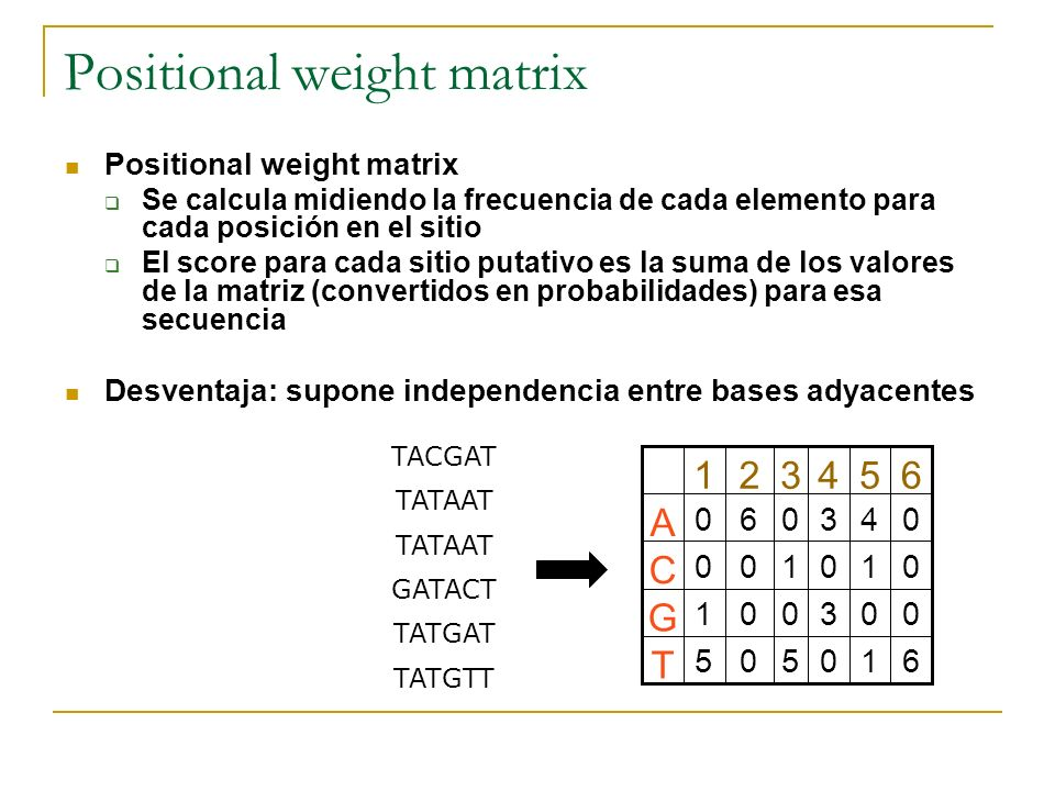 Positional weight matrix