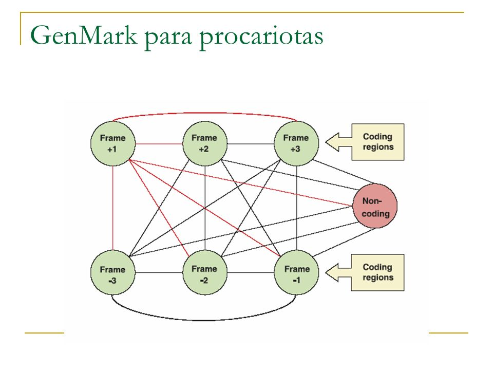 GenMark para procariotas