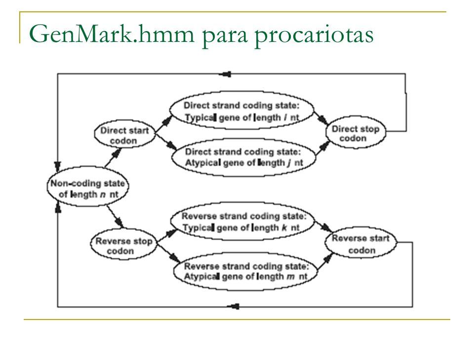 GenMark.hmm para procariotas