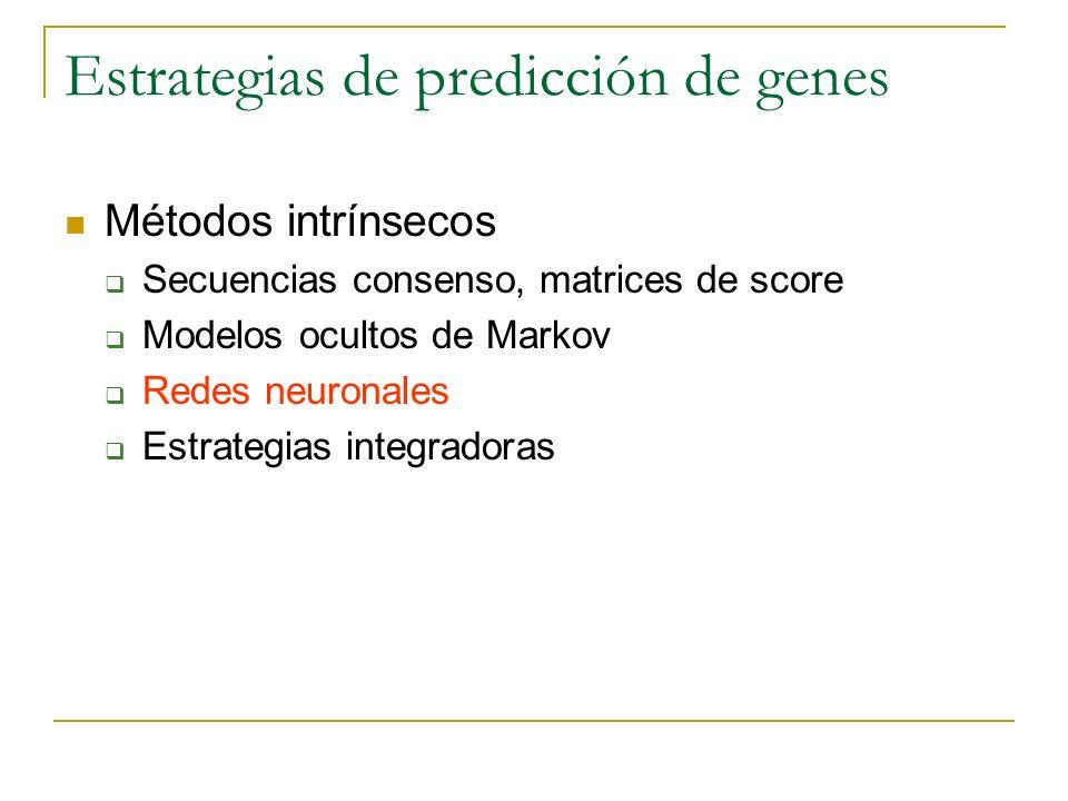 Estrategias de predicción de genes