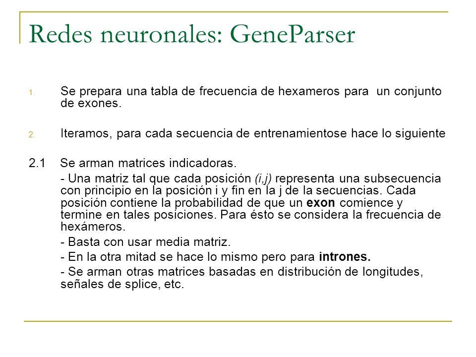 Redes neuronales: GeneParser