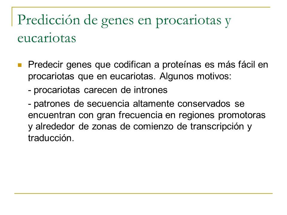 Predicción de genes en procariotas y eucariotas