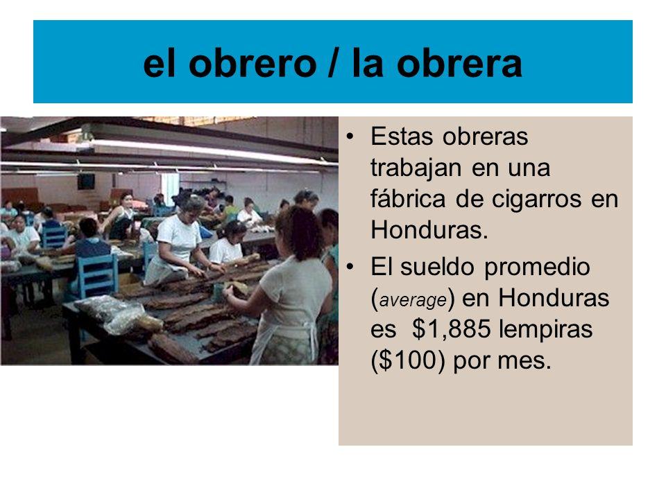 el obrero / la obrera Estas obreras trabajan en una fábrica de cigarros en Honduras.