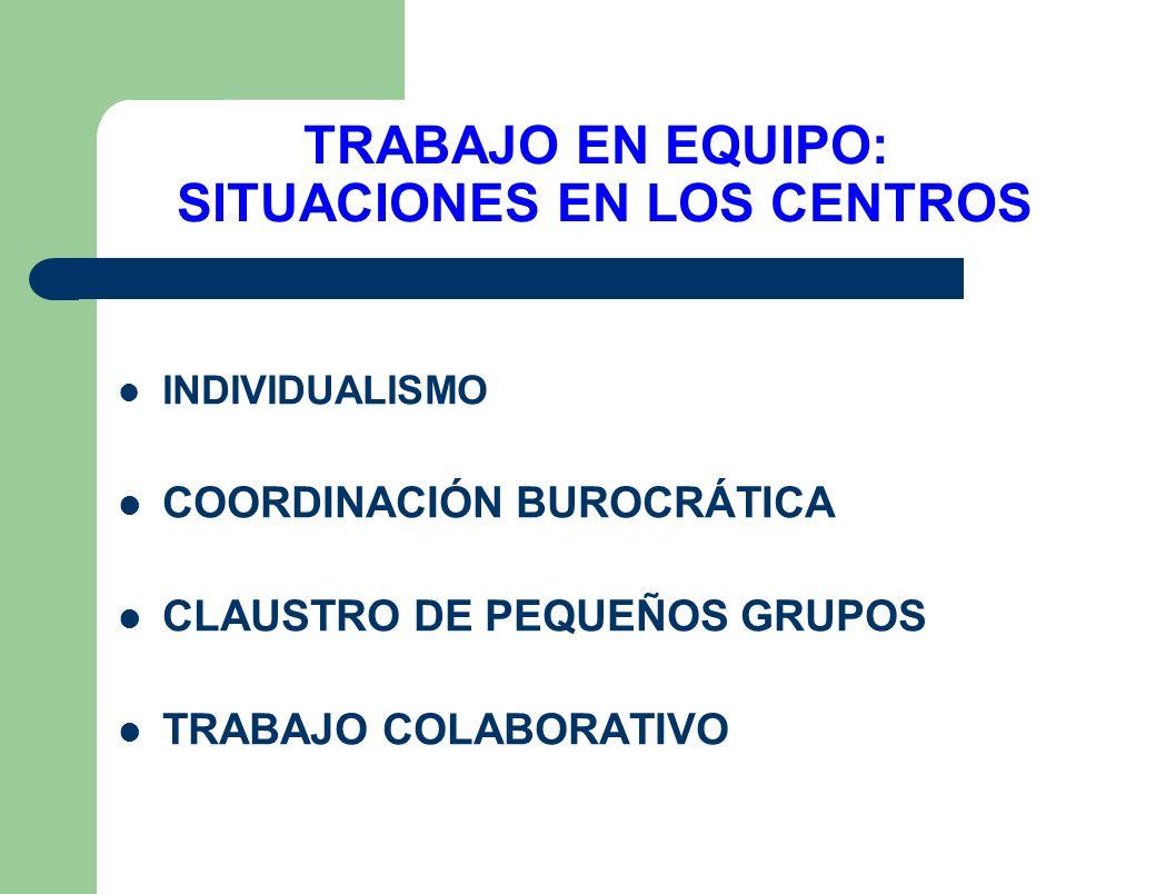 TRABAJO EN EQUIPO: SITUACIONES EN LOS CENTROS