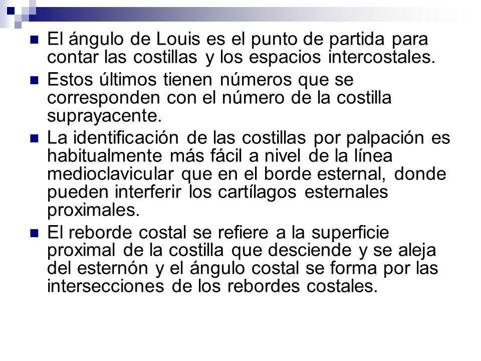 El ángulo de Louis es el punto de partida para contar las costillas y los espacios intercostales.