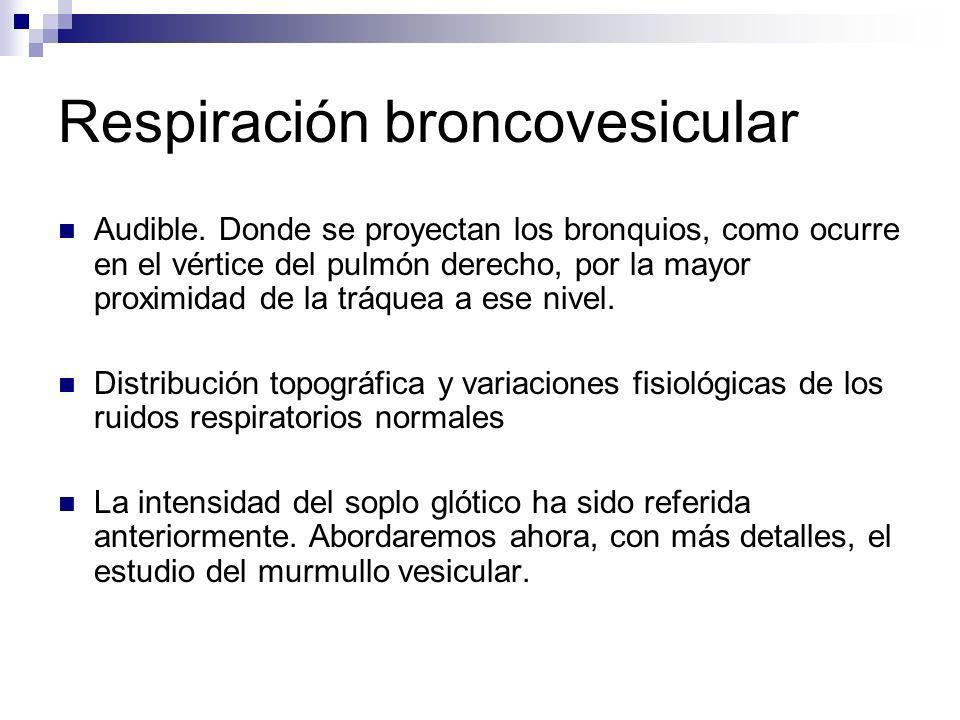 Respiración broncovesicular