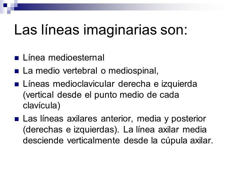 Las líneas imaginarias son: