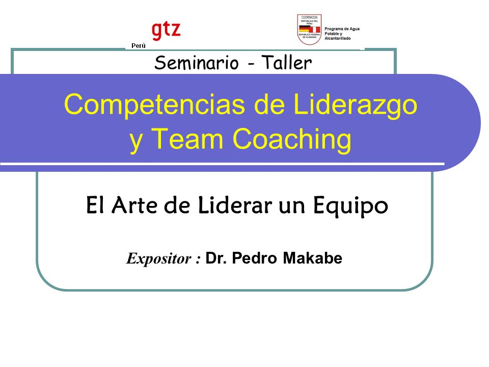 Competencias de Liderazgo y Team Coaching