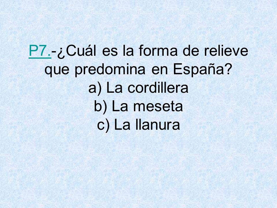 P7. -¿Cuál es la forma de relieve que predomina en España