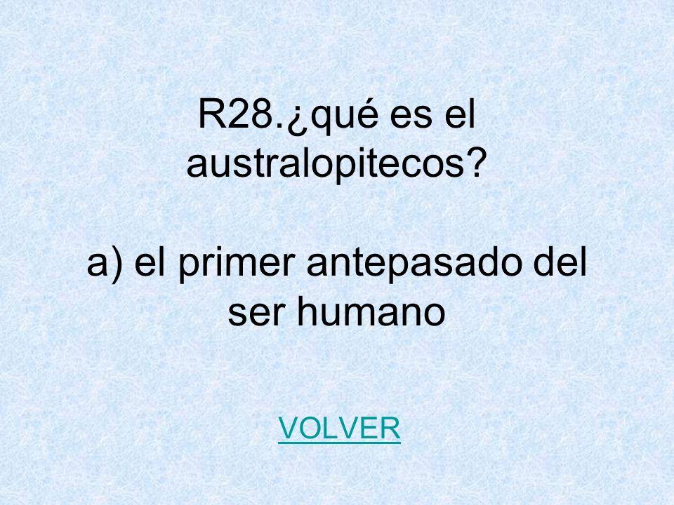 R28.¿qué es el australopitecos a) el primer antepasado del ser humano