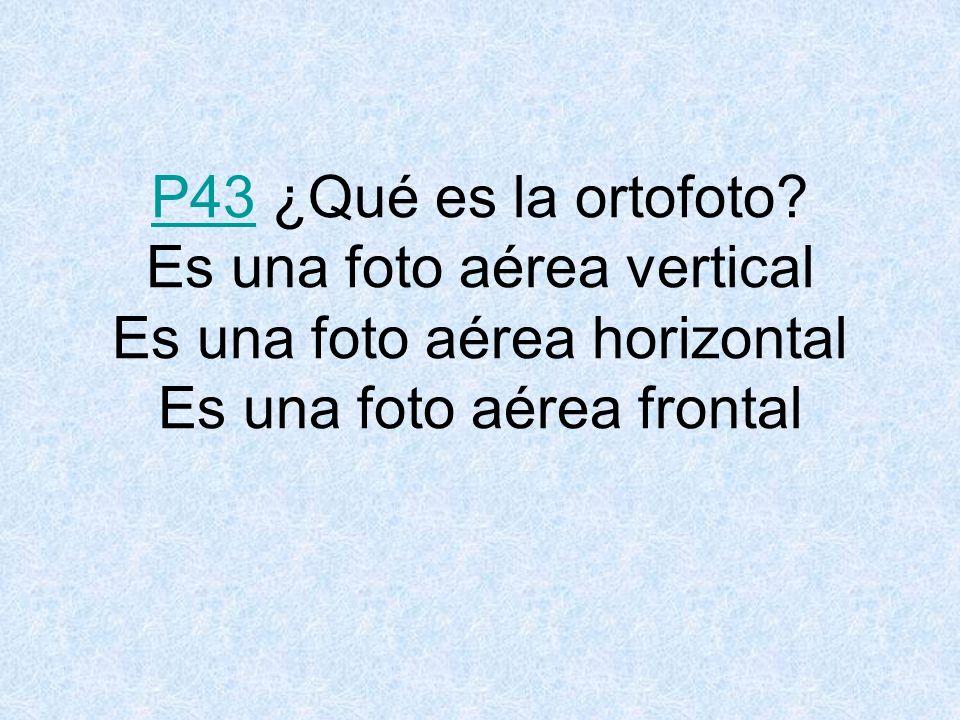 P43 ¿Qué es la ortofoto.