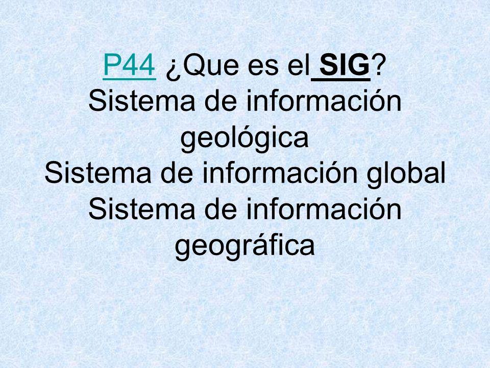P44 ¿Que es el SIG.