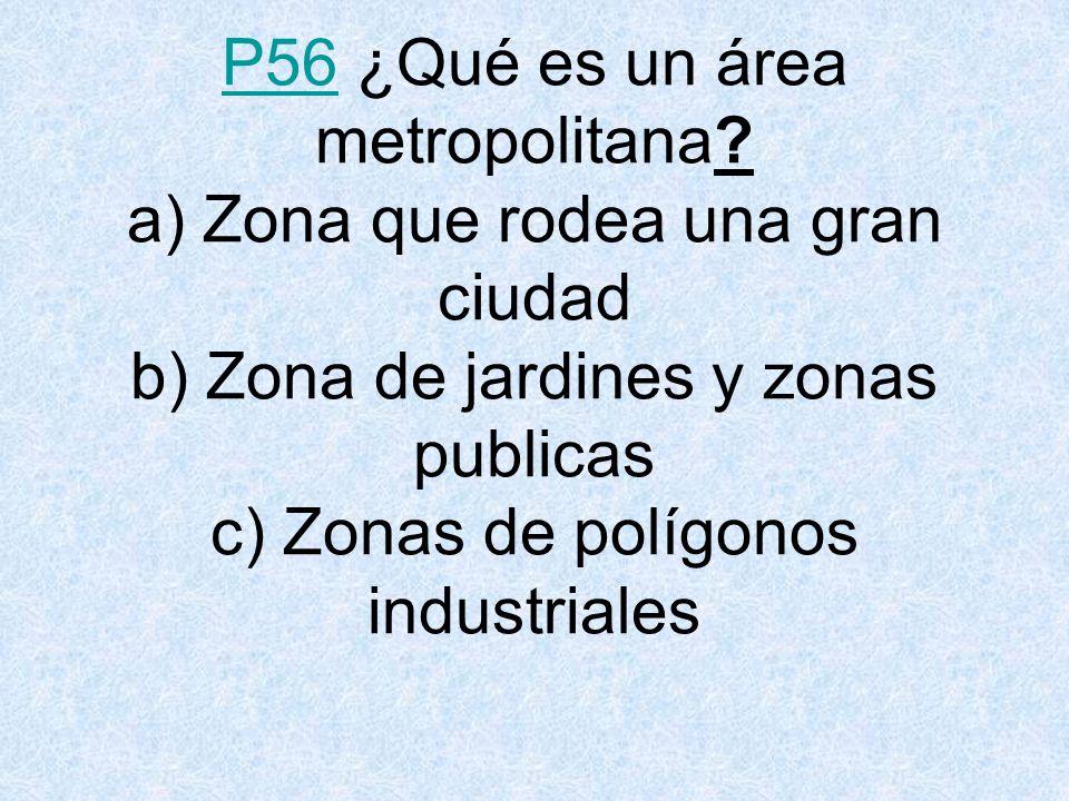 P56 ¿Qué es un área metropolitana