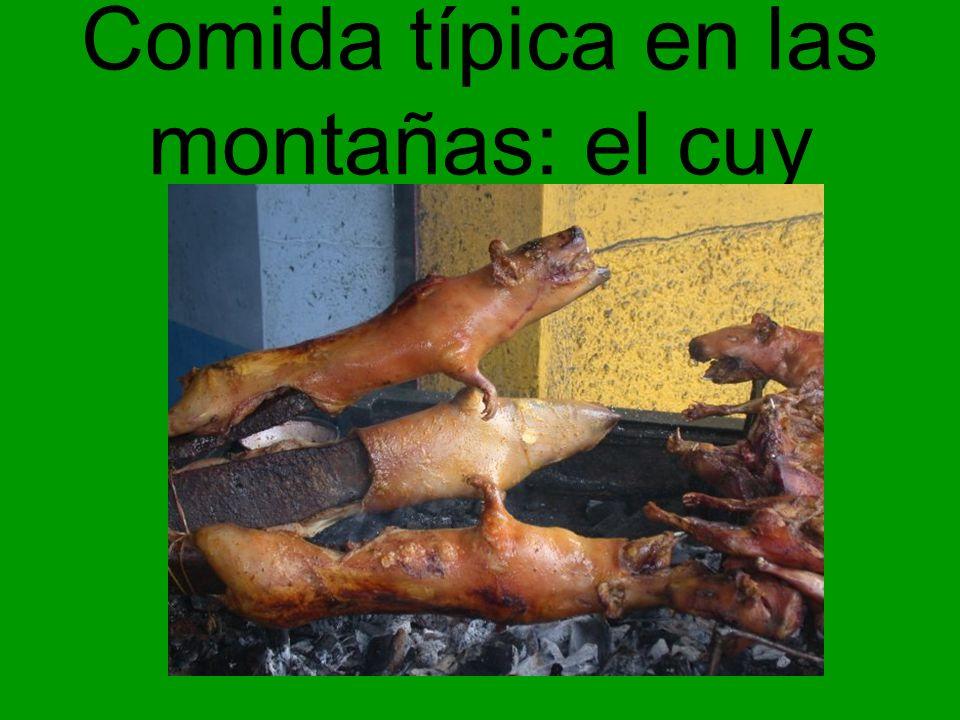 Comida típica en las montañas: el cuy